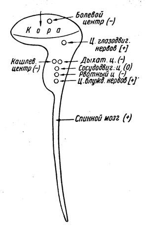 Схема действия морфина на