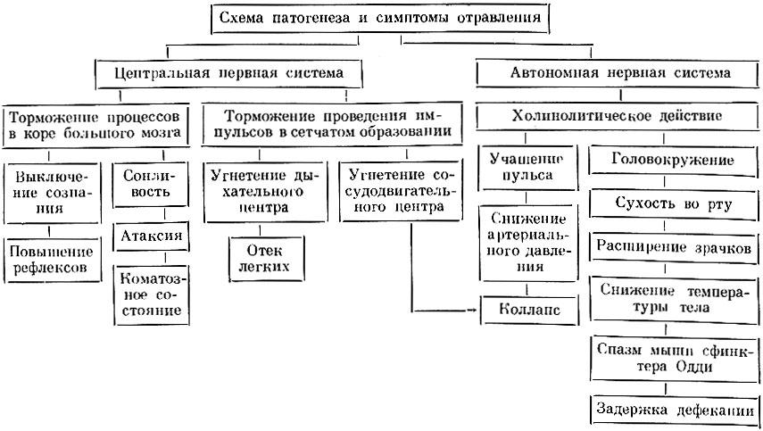 Гистология.mp3 - Иммунная система (часть 3)