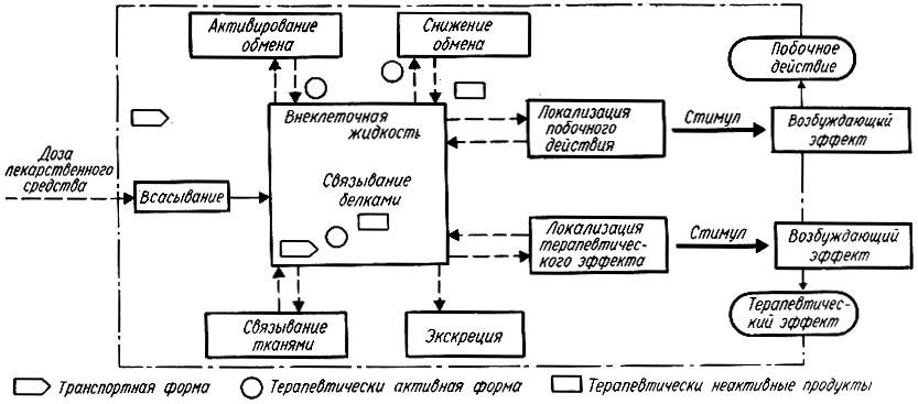 Схема принципиальных процессов