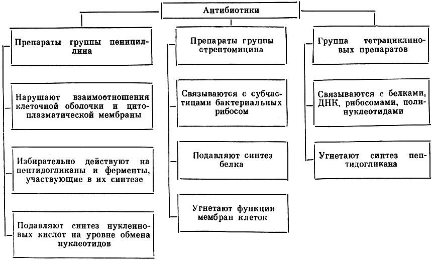 Таблица 84.