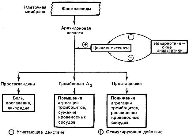 Анальгетиков