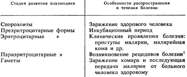 Схема корвет уп 028